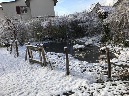 First Snow in my Hometown